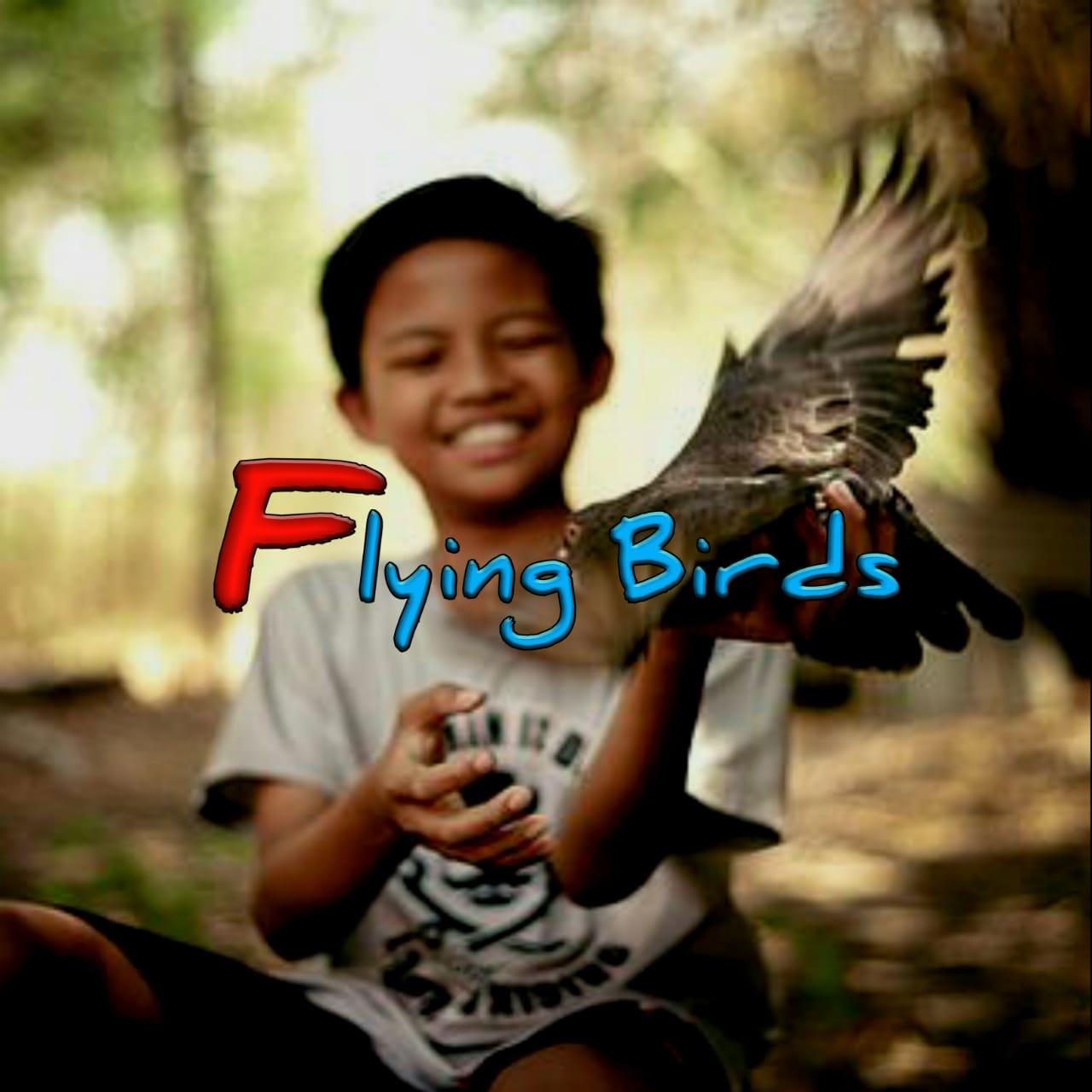 20210420_125915_Smarty-FlyingBirds.jpg